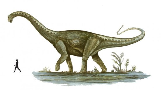 Imagen de dinosaurio