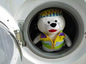 Imagen de Patosa en la lavadora